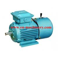 China Single Phase Electric Motor, AC Electric Motor and Geared Motor,Small AC Motor on sale