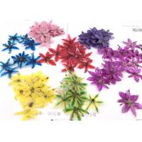 Buy cheap Small Pressed Flowers Preserving Dried Flowers Fit Epoxy Dried Flowers Phone from wholesalers