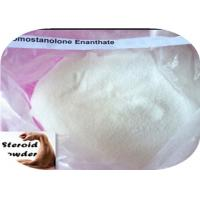 Quality CAS 13425-31-5 Raw Steroid Powder Drostanolone Enanthate For Bodybuilders Cutting Cycles for sale