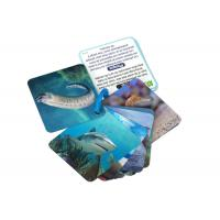 China Animial Image 3d Lenticular Sheets Learning card For Children With Alphabet wholesale