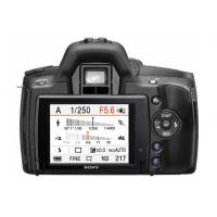 Wholesale 2010 hot selling Sony a390 from china suppliers