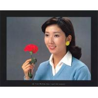China 3NH ITE Color Matching Chart (a girl with carnation) wholesale
