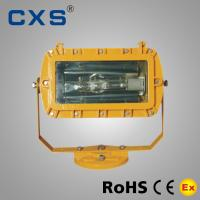 China Dust 50Hz Explosion Proof Floodlight for Public Security Fire Control IP65 AC220V wholesale