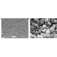 Microencapsulation Phase Change Material For Thermal Regulation Cotton