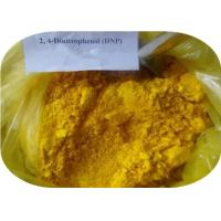 China Pharmaceutical Fat Loss Sodium 2, 4-Dinitrophenate CAS 1011-73-0 DNP on sale