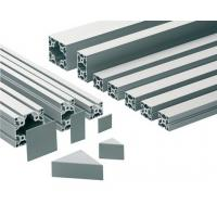 China Alloy 6063 - T5 Anodized Industrial Aluminium Profile Assembly line 123 wholesale