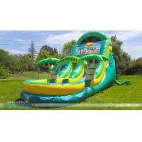 China Children water Inflatable slide,18' tropical oasia slide wholesale