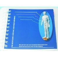China The Meridians and Acupoint Pocket Brief Introduction Handbook wholesale