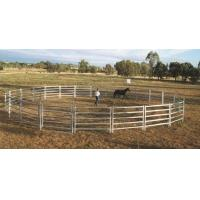 Buy cheap 18 Round Yard Panels For Sale HEAVY Duty Outdoor Animal Enclosure with Gate from wholesalers