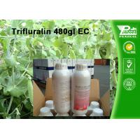 Quality Weeds And Grass Control Selective Herbicide Trifluralin 480g/L EC Cas No. 1582 for sale