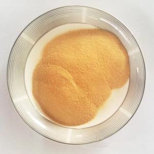 China Water Soluble Corn Oligopeptides Powder Protein 80 Corn Peptides 75 wholesale