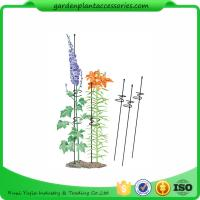 """China Single Grow Garden Plant Supports / Spiral Plant Support 4"""" Z - Rings wholesale"""