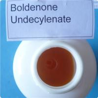 China CAS 13103-34- 9 Legal Anabolic Steroids Boldenone Undecylenate Equipoise 200 For Muscle Building wholesale