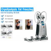 China Cryolipolysis Fat Freezing Machine no surgery for body slimming on sale