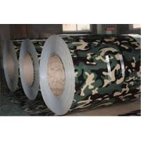 China SPCC SPCH Ral 9006 Paint Galvanized Steel sheet coil Customized Ral  color wholesale