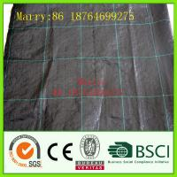 Quality pp woven ground cover fabric for landscape,garden,agriculture for sale