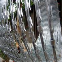 China CBT-65 concertina razor wire ( factory) wholesale