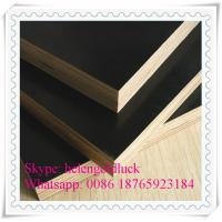 China 18mm Film Faced Marine Plywood for Construction wholesale