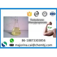 China Testosterone Phenylpropionate Testosterone Anabolic Steroid Maintaining Lean Muscle Mass wholesale