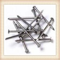 common nails,2.5' 500mm roofing nails,anping factory price