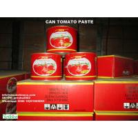 China Chinese Canned Tomato paste/Tomato paste in tin can/Tomato jam/tomato ketchup/tomato sauce on sale