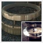 Professional Custom Flange Ring Stainless Steel Forgings Alloy Hastelloy