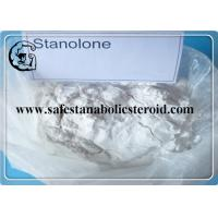 Quality Raw Steroid White Powder Androstanolone Stanolone  for Bodybuilding and Sport Supplyment for sale