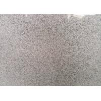 China Indoor / Outdoor Granite Tiles , Light Grey Hard Honed Granite Floor Tile on sale