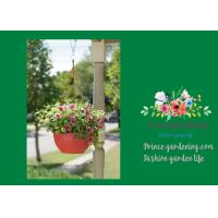 China Self Watering Hanging Flower Baskets / Hanging Baskets For Plants wholesale