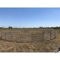 China 16 Panel Horse Yard Panels For Sale Inc Gate, Round Cattle Fences, Corral 11m Diameter wholesale
