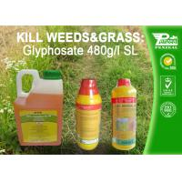 Quality Glyphosate 41% SL Selective Herbicide Control of perennial weeds  Cas No. 1071-83-6 for sale