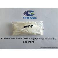 China CAS 62-90-8 Raw Steroid Powders Nandrolone Phenylpropionate NPP Durabolin Cutting Cycle wholesale