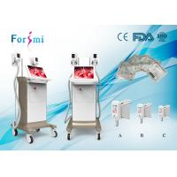 China portable cryotherapy machine, lipo laser slimming machine with factory price wholesale
