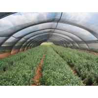 China Black Garden / Carport Wind Production Agriculture Shade Net Polypropylene Shade Cloth wholesale