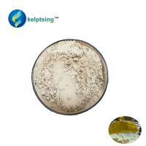 Fucoidan Kombu Algae Polysaccharide brown seaweed extract CAS No. 9072-19-9