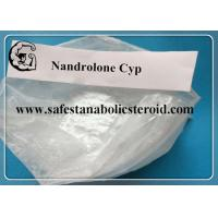 China Semi - Finshed  Injectable Nandrolone Cypionate Safe Steroids For Bodybuilding 200mg / Ml wholesale