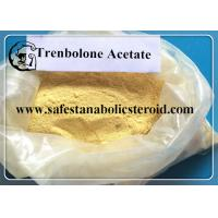 China 99.9% Trenbolone Acetate Safe Muscle Building Steroids Powder For Muscle Gain wholesale