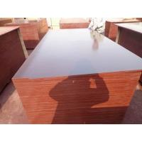 China WBP Phenolic 18mm Film Faced Construction Plywood Price on sale