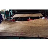 Quality 1270MMX640MMX2.6MM Eucalyptus Core Veneer For Building Construction for sale