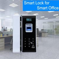 China Office Entrance Glass Door Lock Five Ways To Unlock Long Battery Life Span on sale