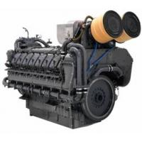 China TBD620 Marine diesel engine wholesale