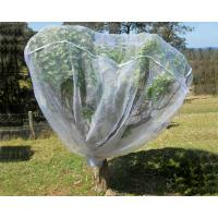 China Fruit Tree Net, 20-50mesh,0.5-6.0m,green and white,protect the trees,Agricultural Plastic Products wholesale