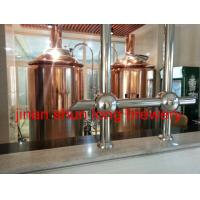 China 5bbl beer brewery machine 600l draft beer machine for 3 years warranty time wholesale