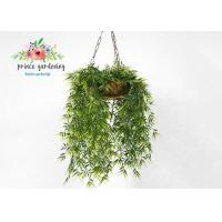 China Customized Steel Wire Hanging Flower Baskets , Hanging Plant Pots wholesale
