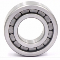 China Good Quality SL18 5022 Full Complement Cylindrical Roller Bearings on sale