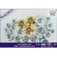 Quality Titanium and titanium alloy gr2 or gr5  Flange Nuts DIN934  manufacture Suppliers for sale