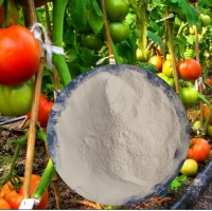 China Non GMO Soybean Extract Hydrolyzed Amino Acid 80% Organic Fertilizer wholesale