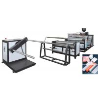 China PE Air Bubble Film MakingMachine Customized  for South Africa With Different Size 1600mm  Model No. DY-1200 wholesale