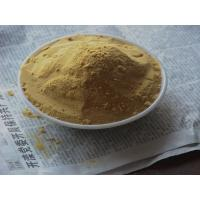 China Raw Material  80% Silymarin  CAS 65666-07-1 Liver Disease Drugs wholesale