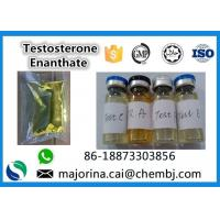 China Testosterone Enanthate / Test E Injectable Muscle Building Steroid White Crystalline Powder wholesale